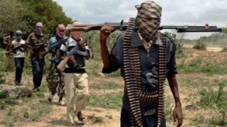 Boko-Haram-BellaNaija-600x336
